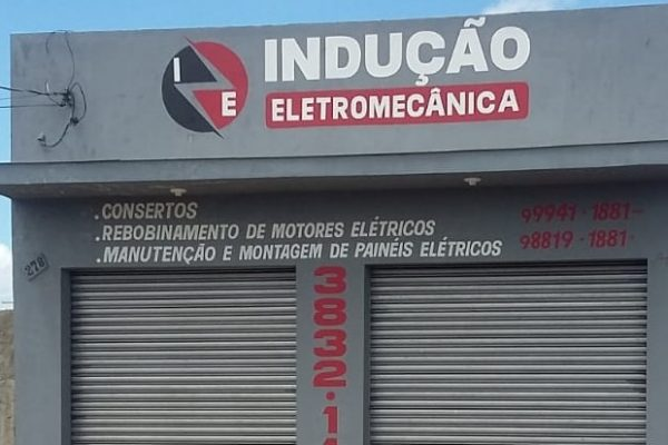 Indução Eletro Mecânica